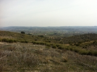 The civil war battlefields at Jarama