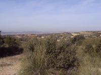 Jamara Commemorative Walk - British Battle Positions