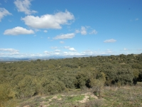 The battlefields near Madrid