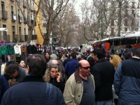 The Sunday Market in Madrid